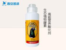 鸽药,凯鸽【益鸽素500ml】针对沙门氏菌、腺病毒、肠道和呼吸道炎症均有疗效